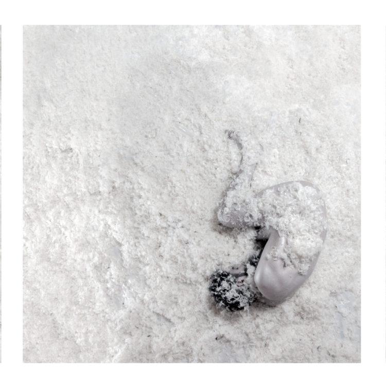 plumas-2-4web